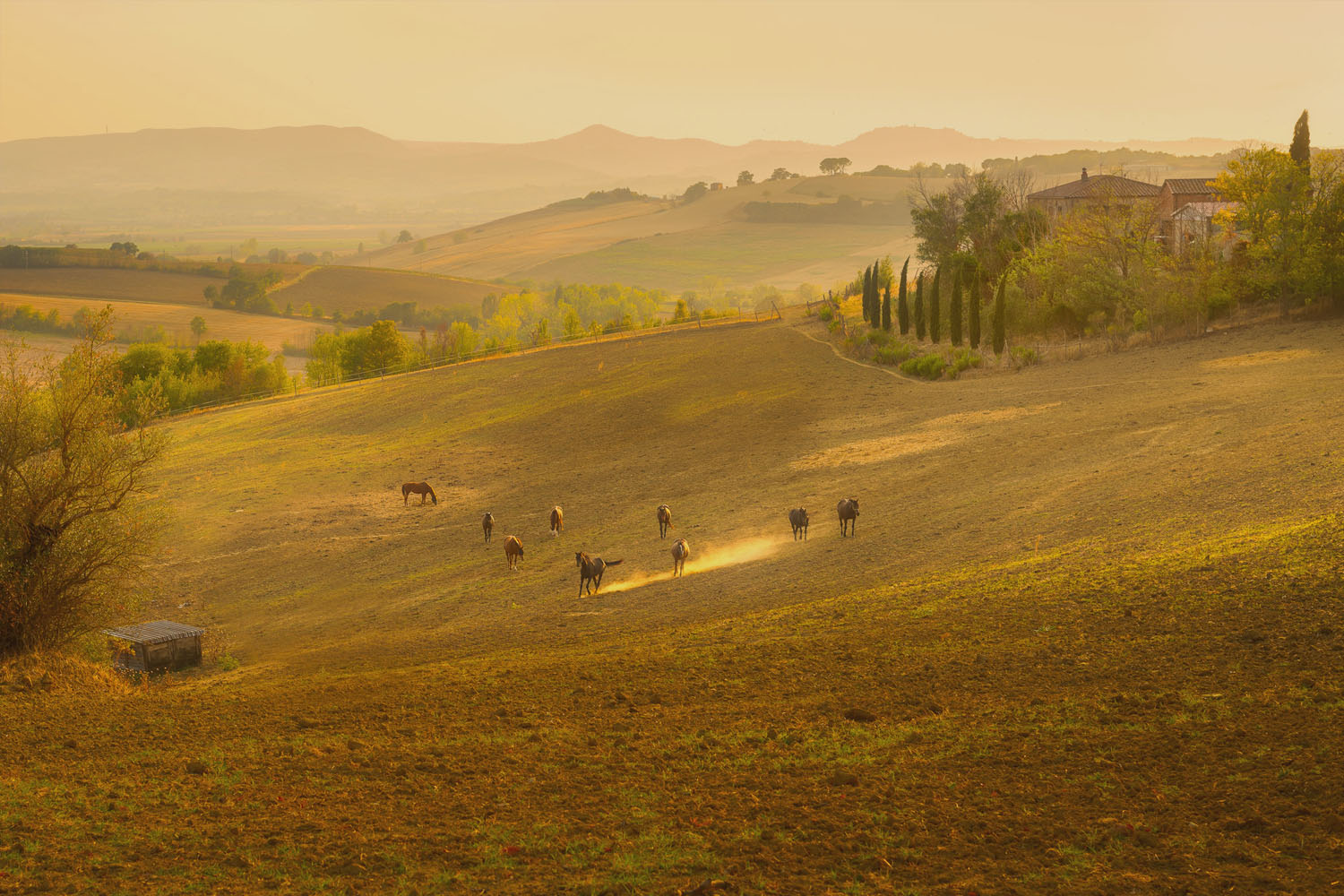 Farm Holidays Tuscany